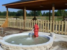 Image result for diy splash pad dogs