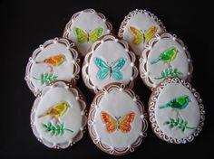 motýlci a ptáčci