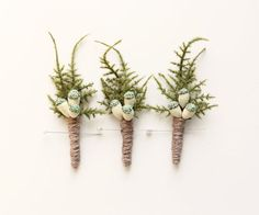 Fern boutonnieres | whichgoose