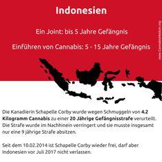 Indonesien hat eines der härten Drogengesetze der Welt. Für den Besitz von Cannabis kann man schon eine Strafe von 5 Jahren bekommen.  Auf der anderen Seite herrscht in Indonesien eine Doppelmoral, denn in Indonesien ist das Rauchen von Zigaretten in der Bevölkerung vollkommen akzeptiert. Dies kann man unter anderem daran sehen, dass 67% der Männer regelmäßig Zigaretten rauchen, welche nachweislich wesentlich schädlicher sind als Marihuana.