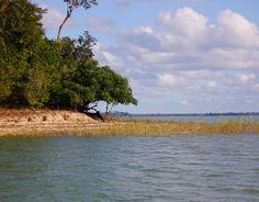 Sudeste  Lagoa Juparanã, Espírito Santo  Segunda maior lagoa do Brasil, a Lagoa Juparanã tem muito espaço para que os banhistas se refresquem em dias ensolarados. Turistas do Espírito Santo e do resto do Brasil aproveitam a beleza deste espelho de água que atinge um comprimento de 38 km e uma largura de 5 km.    Foto: Ariana Animura/Divulgação