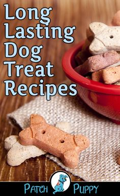 "Healthy Dog Treats Ever wonder how long homemade dog treats last? Our post ""Which of These 16 Healthy Dog Treat Recipes Will Your Dog Like The Best?"" covers this plus has Long Lasting Dog Treat Recipes. Give them a try and tell us what you think. Dog Cookie Recipes, Homemade Dog Cookies, Dog Biscuit Recipes, Homemade Dog Food, Dog Food Recipes, Recipe For Dog Biscuits, Recipes For Dog Treats, Homemade Frosting, Recipe For Dog Treats Homemade"