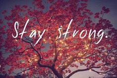 Stay strong quotes night lights outdoors trees