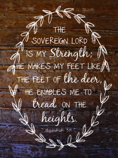 Habakkuk 3:19.........The LORD God is my strength, and he will make my feet like hinds' feet, and he will make me to walk upon mine high places. To the chief singer on my stringed instruments. K.J. version