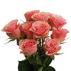 Isle Spray Rose... Est-ce que c'est trop punché pour ton bouquet? En petite quantité bien sur...