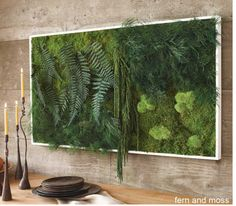 Living wall -so cool!