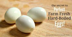 Perfect farm fresh hard-boiled eggs