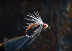 Copper Swan beadhead nymph.  Need to tye up a dozen of these for Spring.