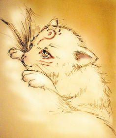 little Madara ^-^