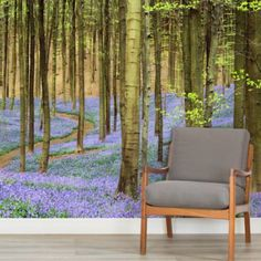 Lilac Floor Forest Square 1 Wall Murals Part 55