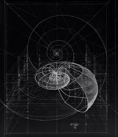 Sacred Geometry | twiggietruth