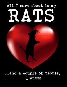All I care about is my rats Art Print, t-shirts, pet rats, fur babies, minions, heart rat, rat humor