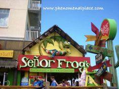 senior frogs in the bahamaas | Below: Señor Frog's at Nassau, Bahamas