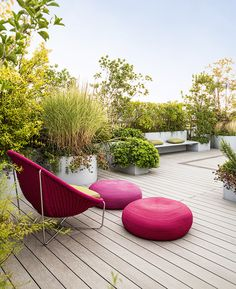 Colors from the bright furnishings are reflected in the plantings of Japanese maple, geraniums and sedums.