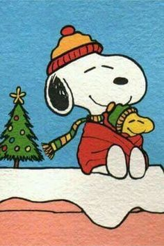 Merry Christmas Snoopy and Woodstock! Peanuts Christmas, Charlie Brown Christmas, Charlie Brown And Snoopy, Noel Christmas, Xmas, Snoopy Feliz, Snoopy And Woodstock, Peanuts Cartoon, Peanuts Snoopy