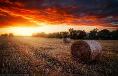 Straw Bales at Sunset, Herefordshire, England by Joe Daniel Price on Straw Bales, Herefordshire, Countryside, England, Sunset, Photography, House, Ideas, Nature