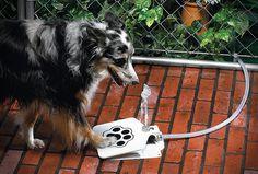 Comercializado pela Esbenshades Garden Center, por pouco menos de 40 dólares, o bebedouro é uma solução espetacular para manter a água sempre disponível e fresca ao seu amigo canino.