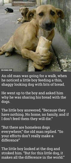 That boy has a heart of gold!! Bless him, Lord!!