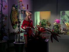 Star Trek Season 1 Episode 1 - The Man Trap (8 Sep. 1966), Yeoman Janice Rand (Grace Lee Whitney)