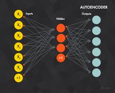 An autoencoder is a neural deep learning network that aims to learn a certain representation of a dataset.