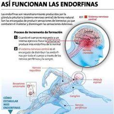 6 Maneras de estimular las Endorfinas - La medicina interior indispensable