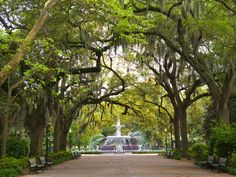 Best for: history buffs looking to revel in the slower pace of life; an affordable city known for its stroll-able gardens and cobblestoned streets; some of the best golf courses in the state; and a thriving arts community (catch a show at the Historic Savannah Theatre, which first opened in 1818) and architecture scene that will keep you well occupied. (Is it Federal, Victorian Regency, Greek and Gothic Revival, or Italianate