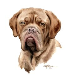 FRENCH MASTIFF Dog Art Print Signed by Artist DJ by k9artgallery