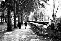 Walk down the Avenue Paris