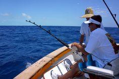 Parranda Sport Fishing Album of the Day! 10-7-13  #fishing #marlin #bluemarlin