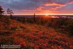 Maisemavalokuvaus – täydellistä valoa metsästämässä