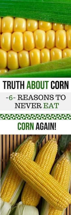 HEALTH & BEAUTY TRUTH ABOUT CORN – 6 REASONS TO NEVER EAT CORN AGAIN -