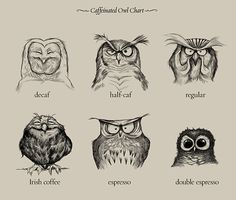 Ive had multiple requests this week to make a print out of these works. So for those who are interested, here you go - http://society6.com/davemott/Caffeinated-Owls_Print