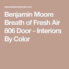 Benjamin Moore Breath of Fresh Air 806 Door - Interiors By Color Garage Paint, Benjamin Moore Paint, Wall Exterior, Painted Front Doors, Breath Of Fresh Air, House Entrance, White Paints, Paint Colors, Breathe