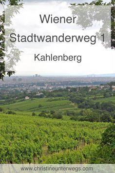 Heart Of Europe, Day Trip, Vienna, Austria, Dubai, Beautiful Places, Wanderlust, Mountains, City