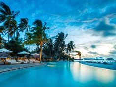 Maldive, Atollo Thaa | Billionaire Travel