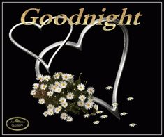 Good night sister and all,have a peaceful sleep ,God bless xxx❤❤❤✨✨✨🌙 Good Night Sister, Lovely Good Night, Good Night Image, Good Night Quotes, Good Morning Good Night, Good Night Greetings, Night Wishes, Sunday Greetings, Good Evening Friends Images