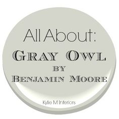 Learn ALL about Benjamin Moore Gray Owl (Colour Trends 2016). Discover the undertones in this light gray paint color and learn how it can act in your room