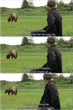 Werner Herzog's Grizzly Man (2005) Grizzly Man, Werner Herzog, Films, Movies, Body Image, Cinematography, Anonymous, Filmmaking, Documentaries