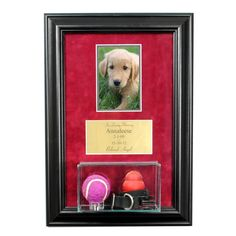 Pet Memorial Picture Frame with Eng and Display by PerfectCases, $69.95