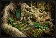 An adorable fairy door. I wonder who lives here? Hmmmmmmmmmm....maybe there really are Gnomes & fairies & such......