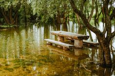 more vody v Morave Outdoor Furniture, Outdoor Decor, Garden Bridge, Outdoor Structures, Park, Home Decor, Decoration Home, Room Decor, Parks