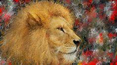 PCペイントで絵を描きました! Art picture by Seizi.N:   ライオンの絵を描きました。  Yoshiko Kishino Trio 「雪待月」(Yuki-Machi-Tsuki) http://youtu.be/xnKLuuuDkDI