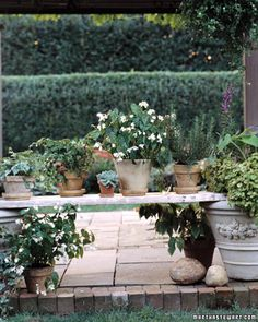 Garden Shelf - a plank of wood laid across two large pots creates a nice space for a small container garden.  Put larger plants or a collection of herbs in the large end pots. #patio