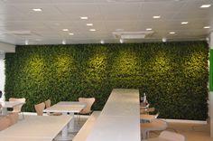 Superjet International Furnborough Tecverde vertical garden green wall