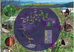 Week End nella Valle delle Orchidee a Sassano (SA)  http://www.antichifeudi.com/offerte/