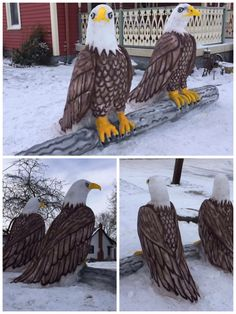 "Eagles by the ""Snow Artist"" Snow Artist, Eagles, Eagle"