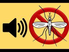 Sonido Anti Zancudos Anti Mosquitos Repellent Sound