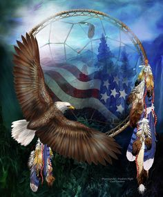 On the wings of an eagleAbove mountains so highLet freedom fly.Freedom's Flight prose by Carol CavalarisThis artwork of a bald eagle and an American flag within a dream catcher, is from the 'Dream Catcher' collection of art by Carol Cavalaris. Native American Artwork, American Indian Art, Native American Indians, Cherokee Indians, Patriotic Pictures, Eagle Pictures, American Flag Eagle, American Freedom, Animal Gato