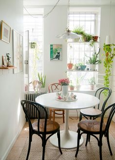 Love the plants and natural light