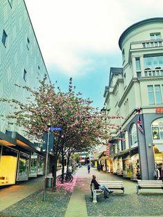 Kassel (Hessen)